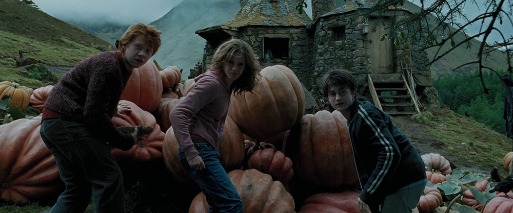 Scena tratta da Harry Potter and the Prisoner of Azkaban