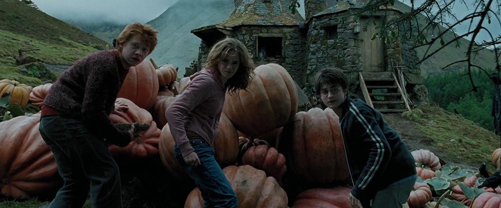 Scena tratta da Harry Potter e il Prigioniero di Azkaban